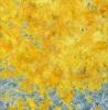 yellow-resized